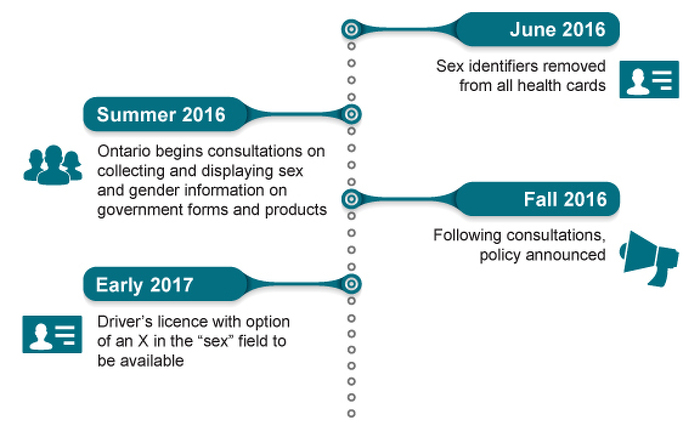 Timeline for Changes to Public-Facing Government Forms and Products