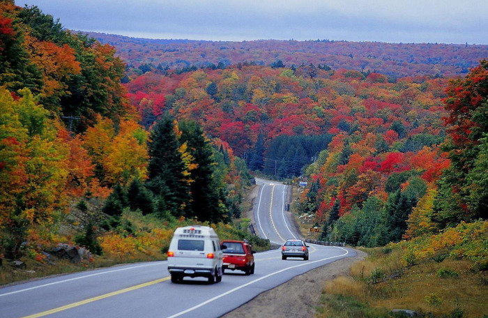 Travel to Algonquin to experience beautiful fall colours.