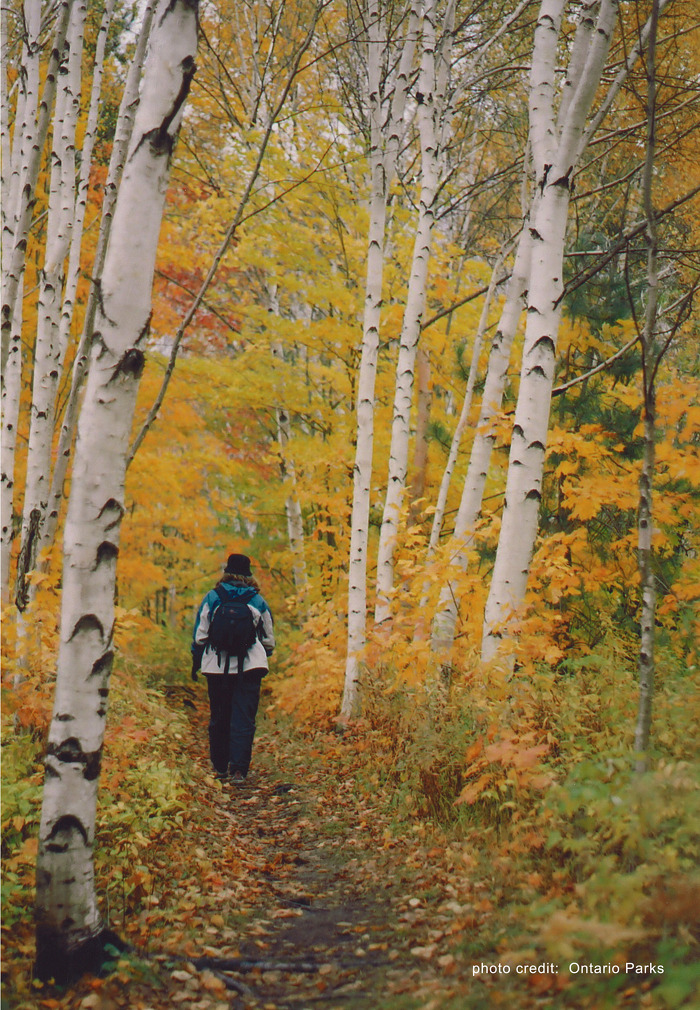 Killarney provides great fall hiking opportunities.