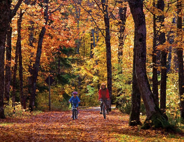 Follow a trail on a bike or mobility device to enjoy the fall colours. Credit: Ontario Parks