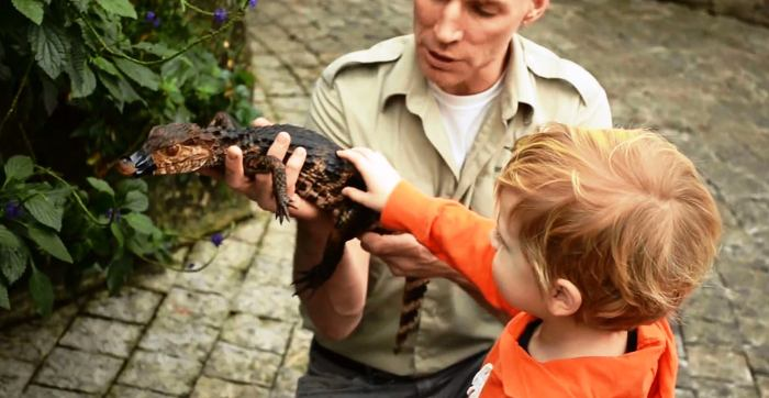 Make friends with a swamp creature at Niagara Falls Butterfly Conservatory (Photo Credit: Niagara Parks Commission)