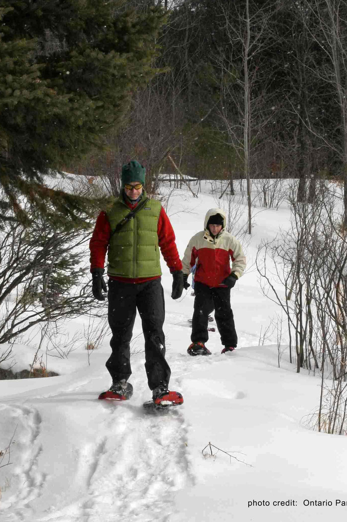 Enjoy a winter's stroll in Arrowhead Provincial Park.