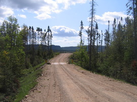 Forest Access Road