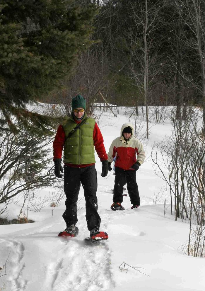 Ballade hivernale dans le parc provincial Arrowhead.