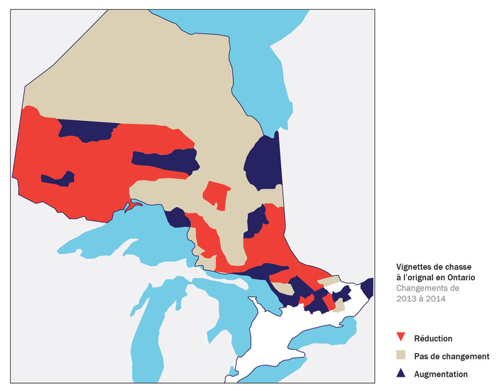 L'Ontario réduit le nombre de vignettes de chasse à l'orignal en 2014