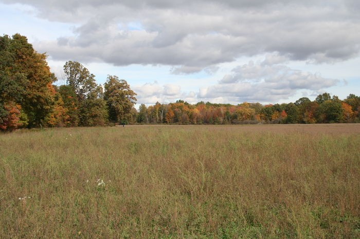 Parc provincial Cedar Creek