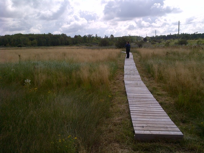 Parc provincial Carden Alvar