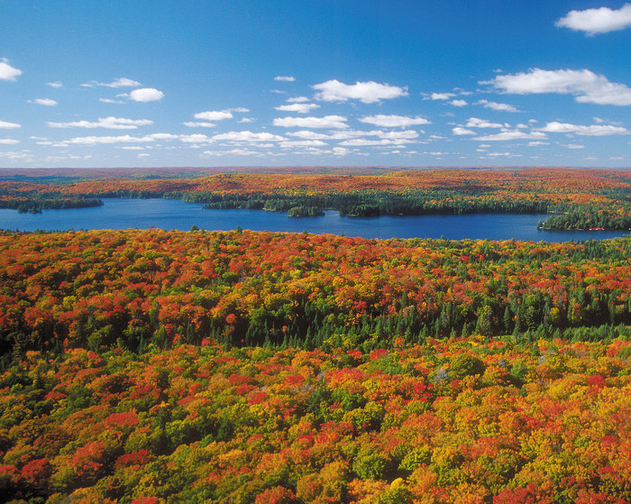 On peut voir cette belle palette de couleurs dans plusieurs parcs provinciaux de l'Ontario.