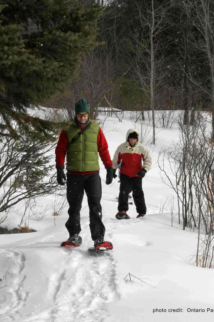 Profitez d'une promenade en hiver au parc provincial Arrowhead.