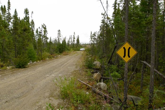 Les automobiles utilisent aussi les routes forestières
