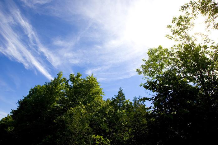 L'Ontario adopte une loi historique sur le changement climatique