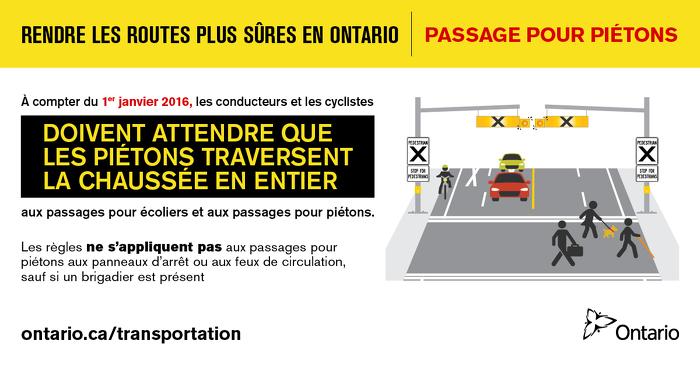 Rendre les routes plus sûres en Ontario : passage pour piétons